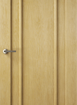 SpaceKraft internal door (2)